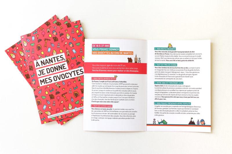 Stratégie de communication - Flyer Dons d'ovocytes
